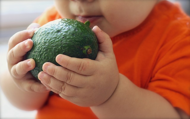 baby food recipes avocado